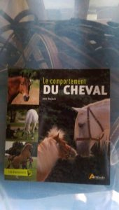 comportement cheval