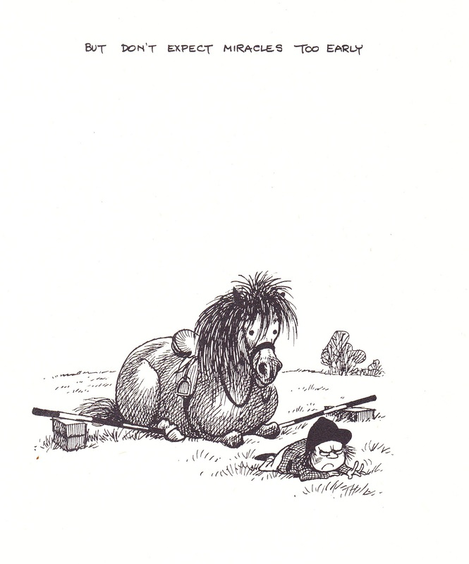 Pony Thelwell humour cavalier cheval