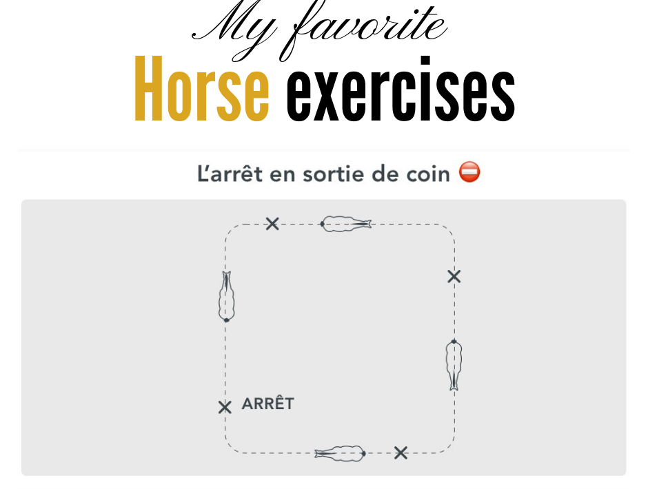 my favorite horse exercises